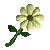 EverQuest Flower white.jpg