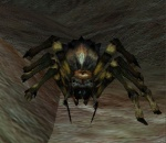 EverQuest Venomfang.jpg