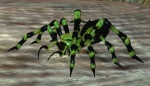 EverQuest gloomspider.jpg